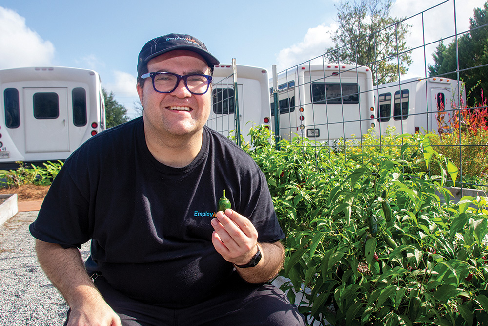 Stefan helped pick a peck of jalapeno peppers